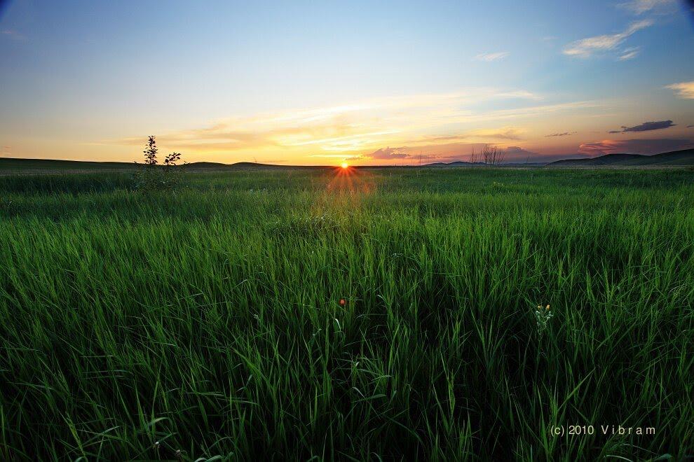 草原夕阳下, Калга
