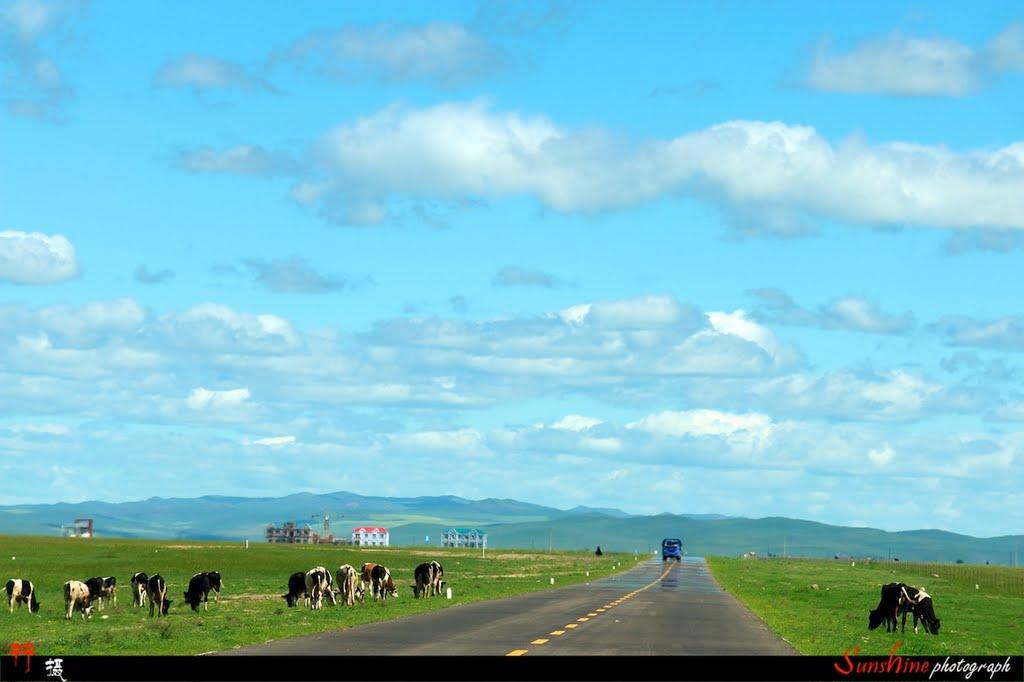 草原上的路, Калга