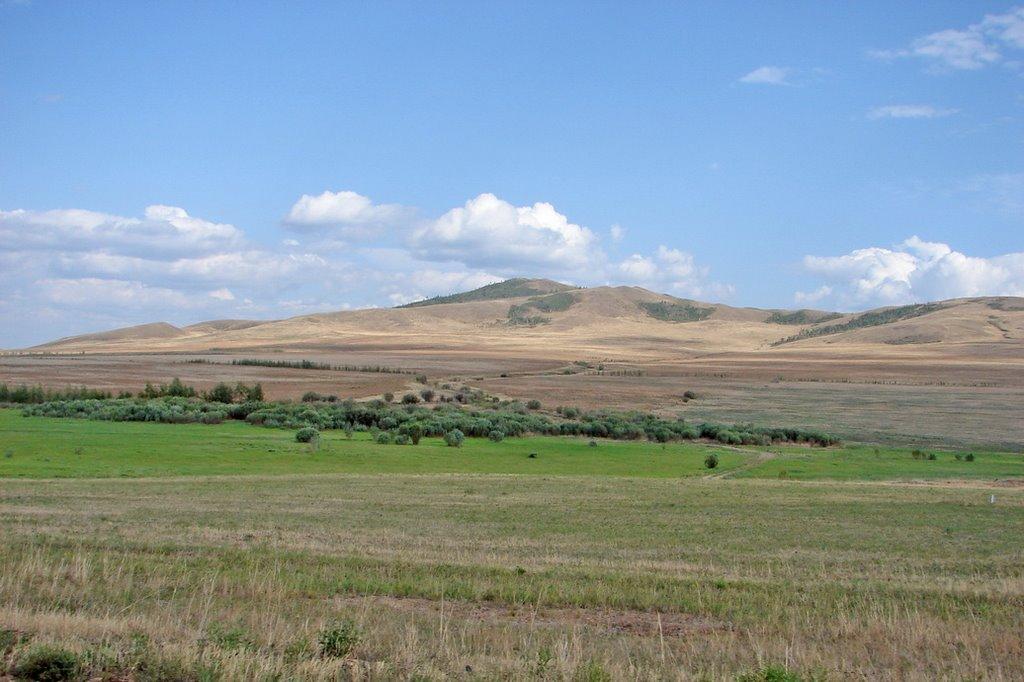 Агинская Степь (Забайкалье, Агинский Бурятский Автономный Округ, 2006); Agin steppe (Transbaikalia, Agin-Buryat Autonomous Okrug, 2006), Нижний Часучей