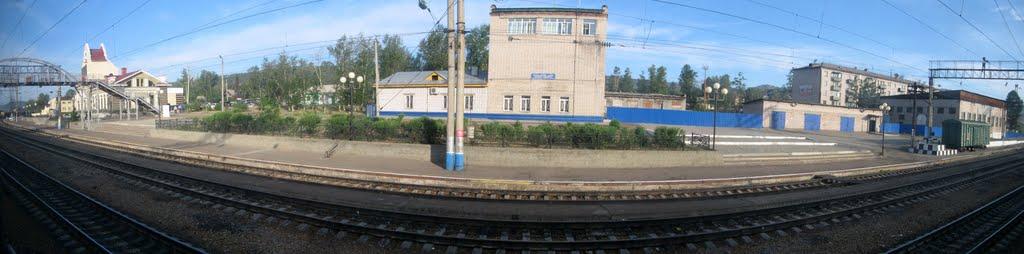 г. Петровск-Забайкальский, железнодорожная станция Петровский завод, 25.06.2011, Петровск-Забайкальский