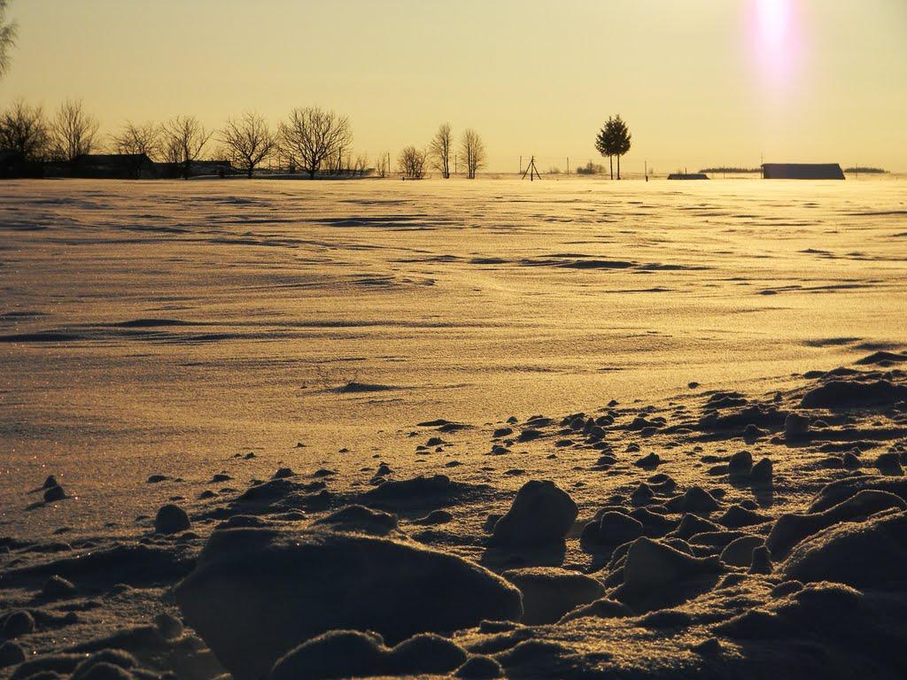 Зимнее поле., Аликово