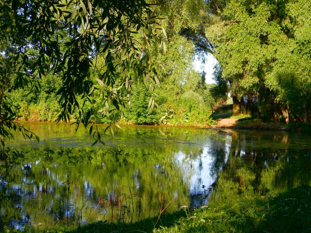 Летний пруд., Аликово