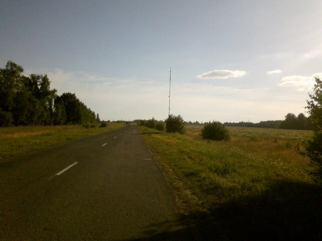 Дорога в Березовку, Ибреси