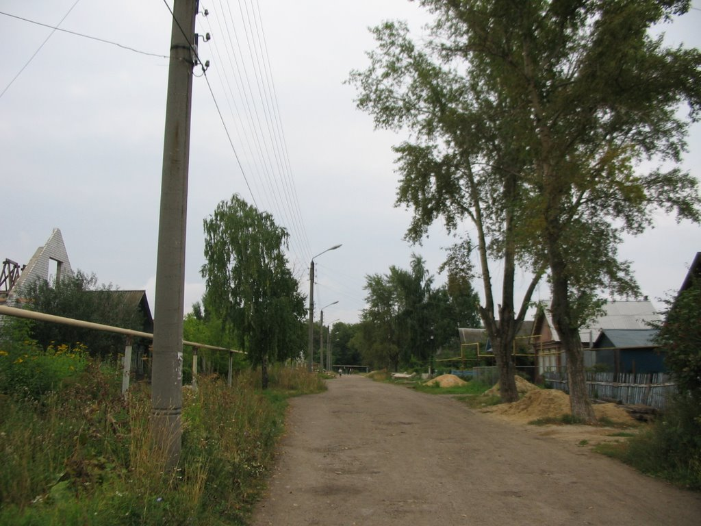 Ул. Лесная, Канаш