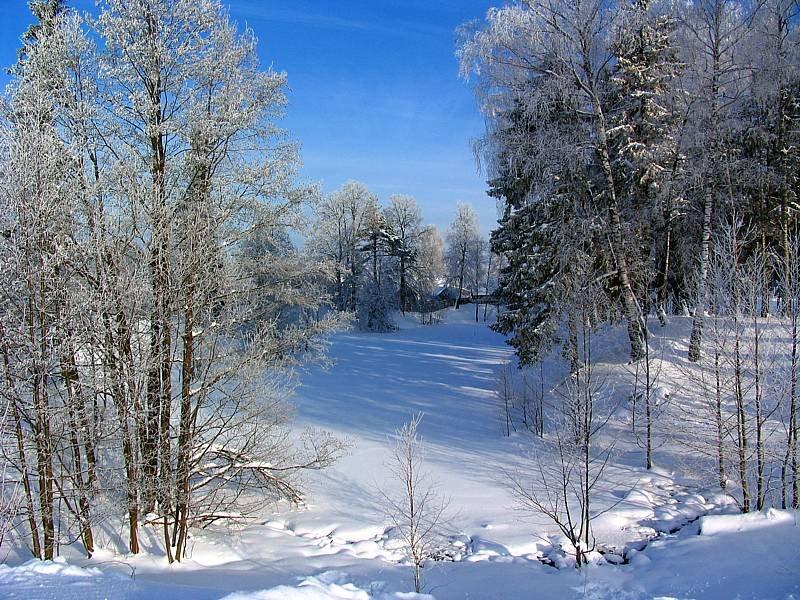 зима(winter), Киря