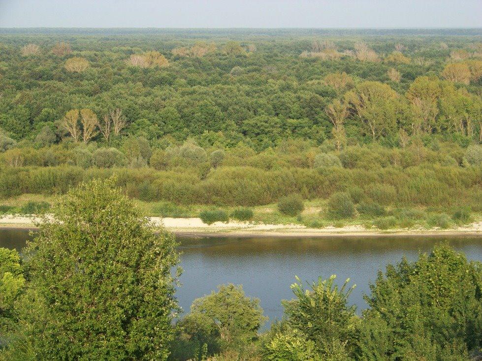 Sura river Река Сура Вид из с. Порецкое, Порецкое