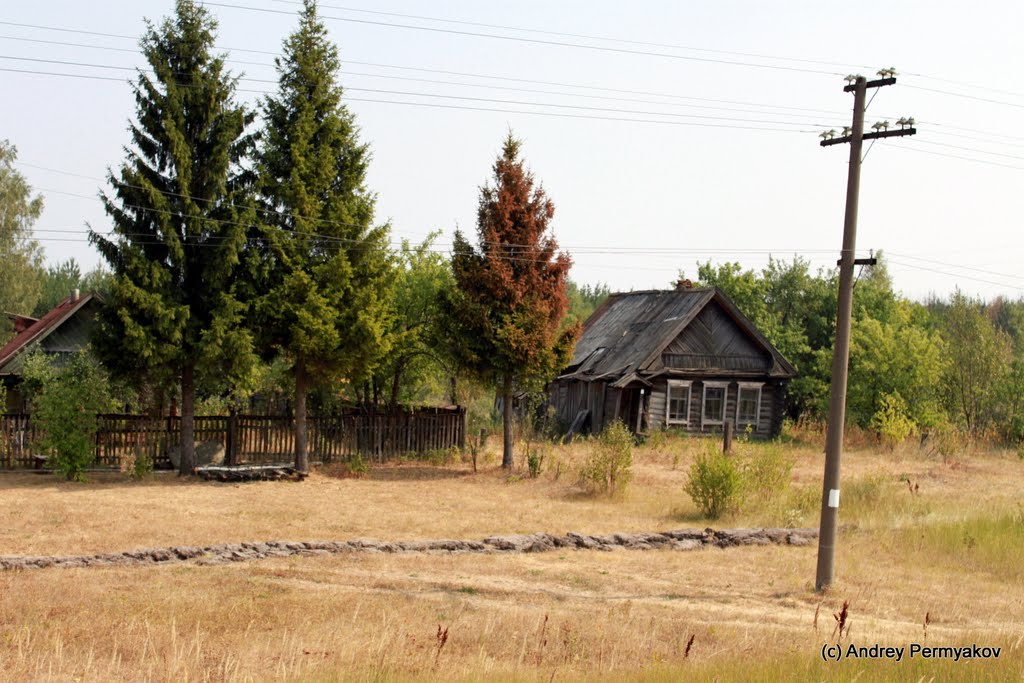 Заброшенные дома, Шемурша