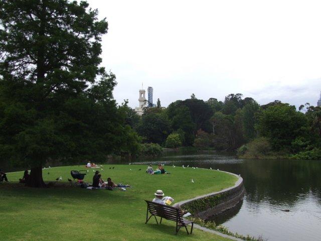 0385 Melbourne, Royal Botanic Gardens, Мельбурн