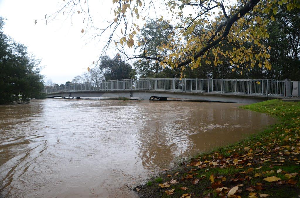 Traralgon Floods June 2013, Траралгон