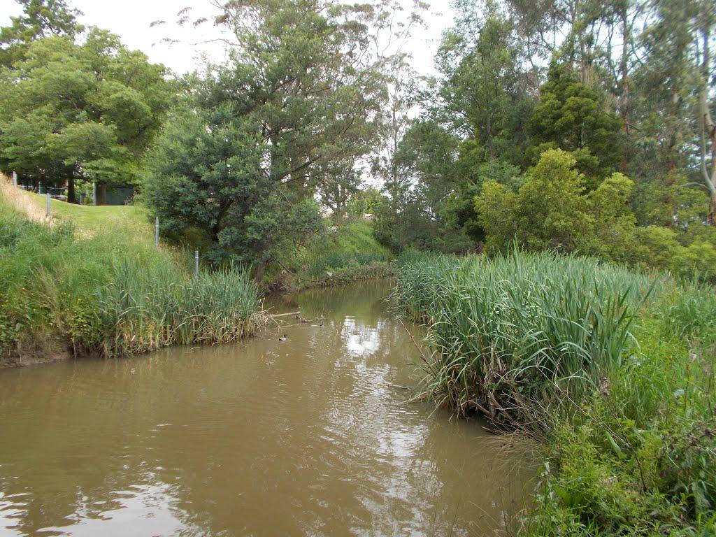 Traralgon Creek, Траралгон