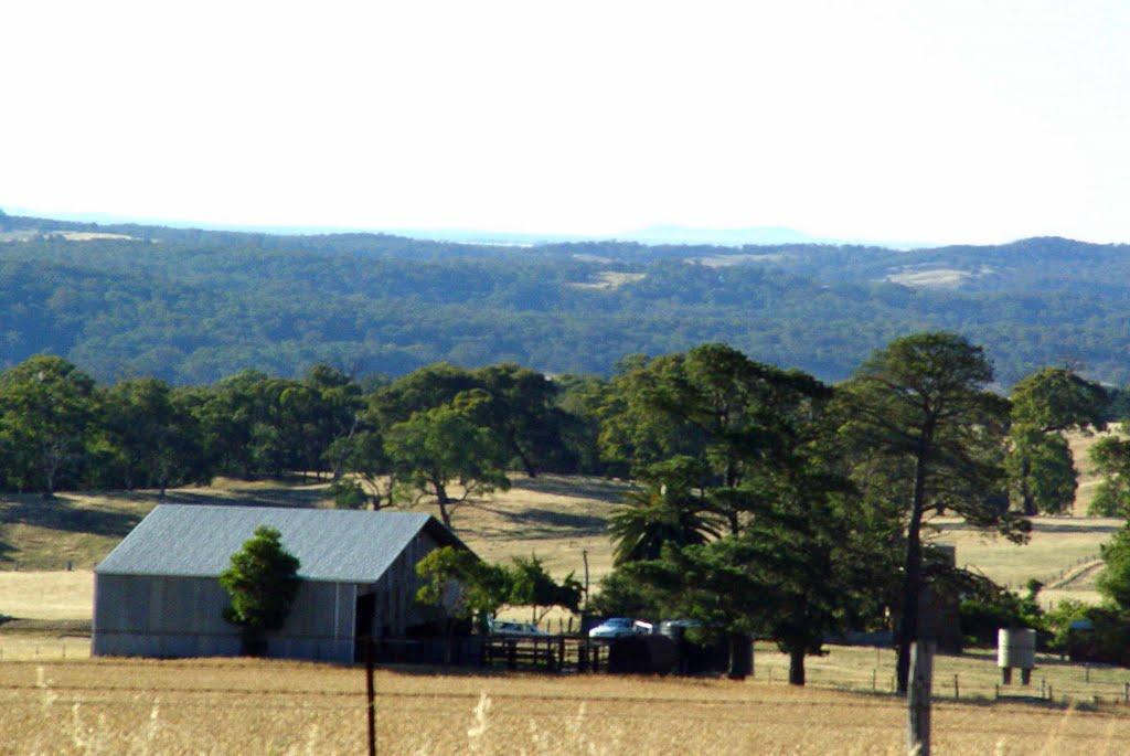 farm near Bendigo, Водонга