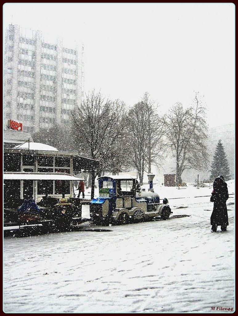 зима 1, Добрич