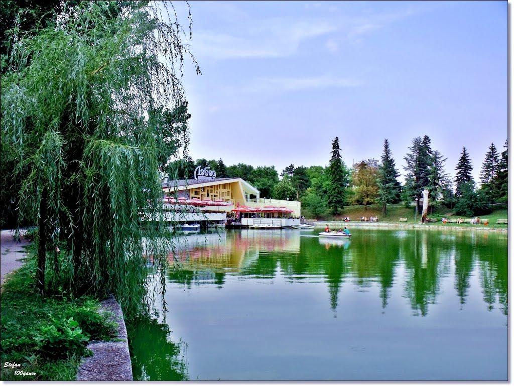 """The lake and restaurant """"Swan"""" / Езерото и ресторант """"Лебед"""", Добрич"""