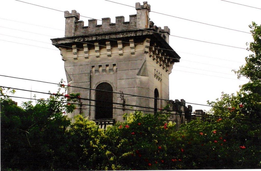 Castelo Simões Lopes, linda e imponente arquitetura..., Пелотас
