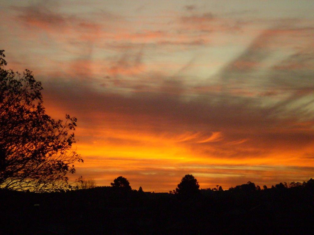 A Festive Sunset, Лахес