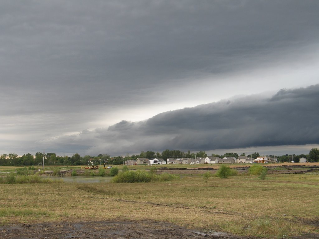 Storm, Аллеман
