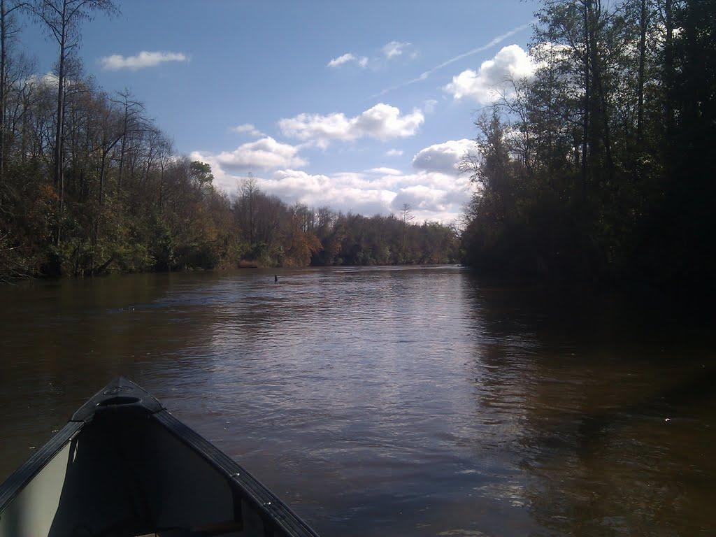 Big escambia creek, Фломатон