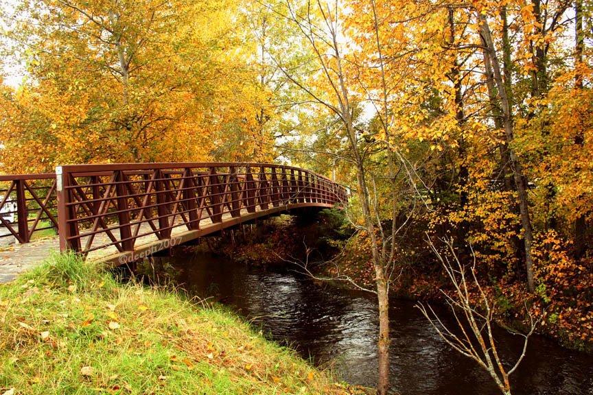 Woodside Park in Fall, Анкоридж