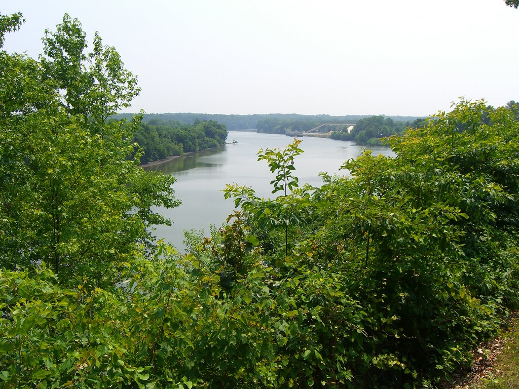 James River at Drurys Bluff Battle Field, Беллвуд