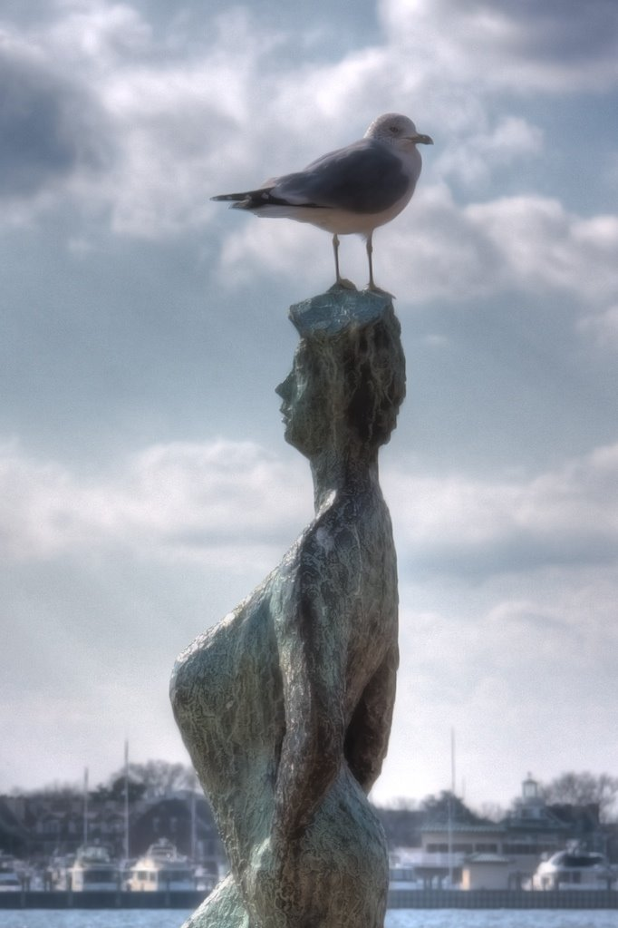 Jonathan Livingston Seagull on the Peaks of Otter, Портсмут