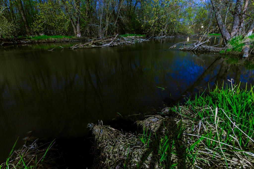 Along the Fox River, Брукфилд