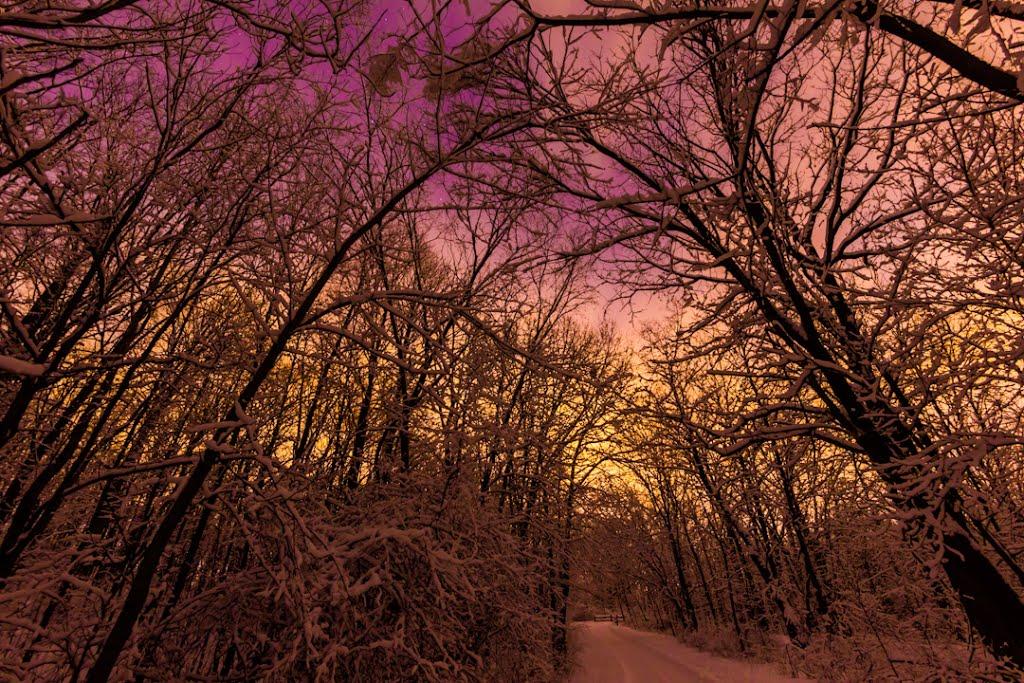 Walking the Path at Night, Брукфилд