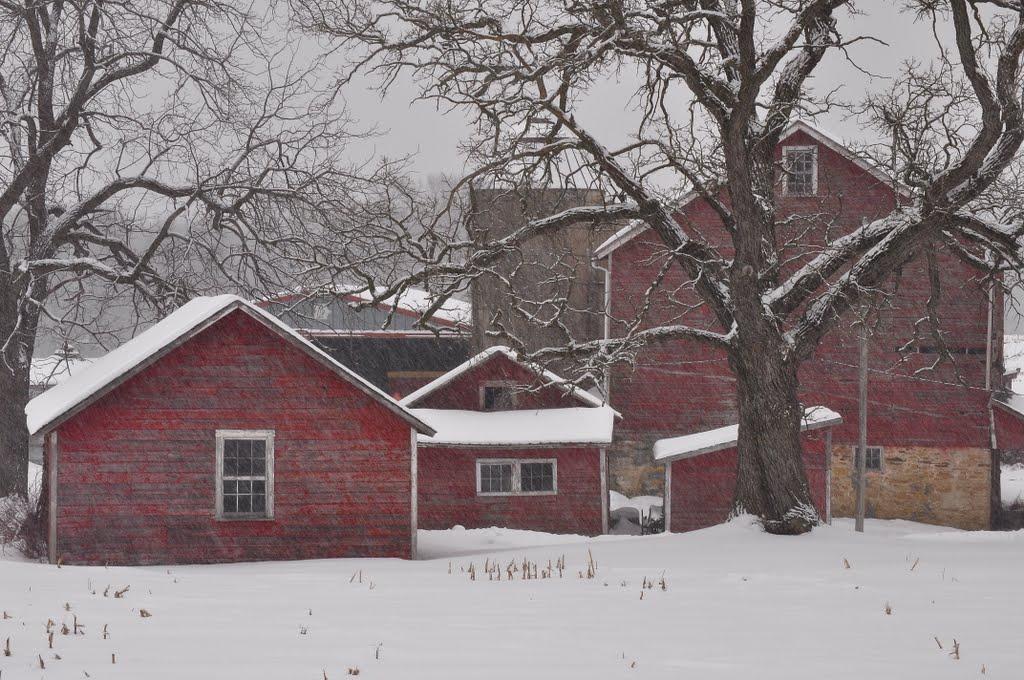snowy day, Олбани