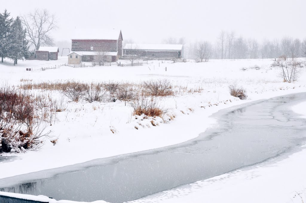 farm and snow, Олбани