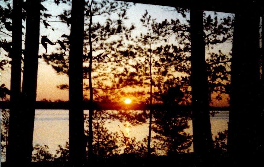 Sunrise, Ракин