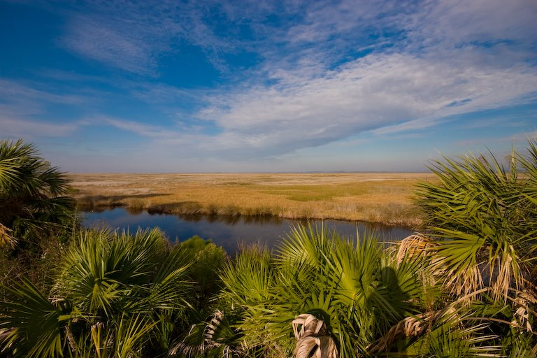 St. Marks National Wildlife Refuge, Аттапулгус