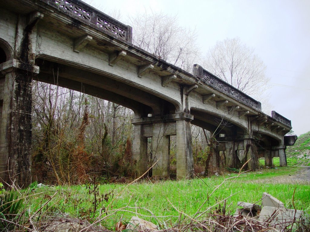 1920 Victory Bridge ruins, once spanned the Apalachicola river, Chattahoochee (12-31-2006), Аттапулгус