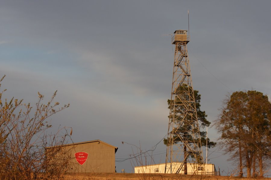 Georgia Forestry Commissions Fire tower., Блаирсвилл