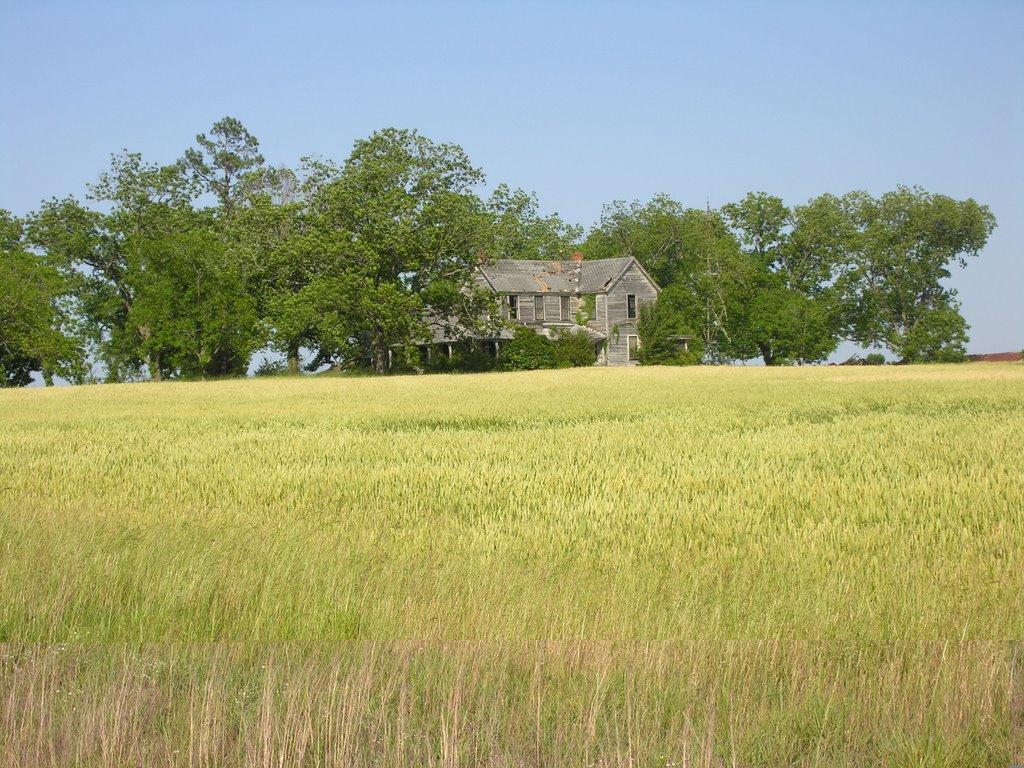 old farm house, Варнер-Робинс