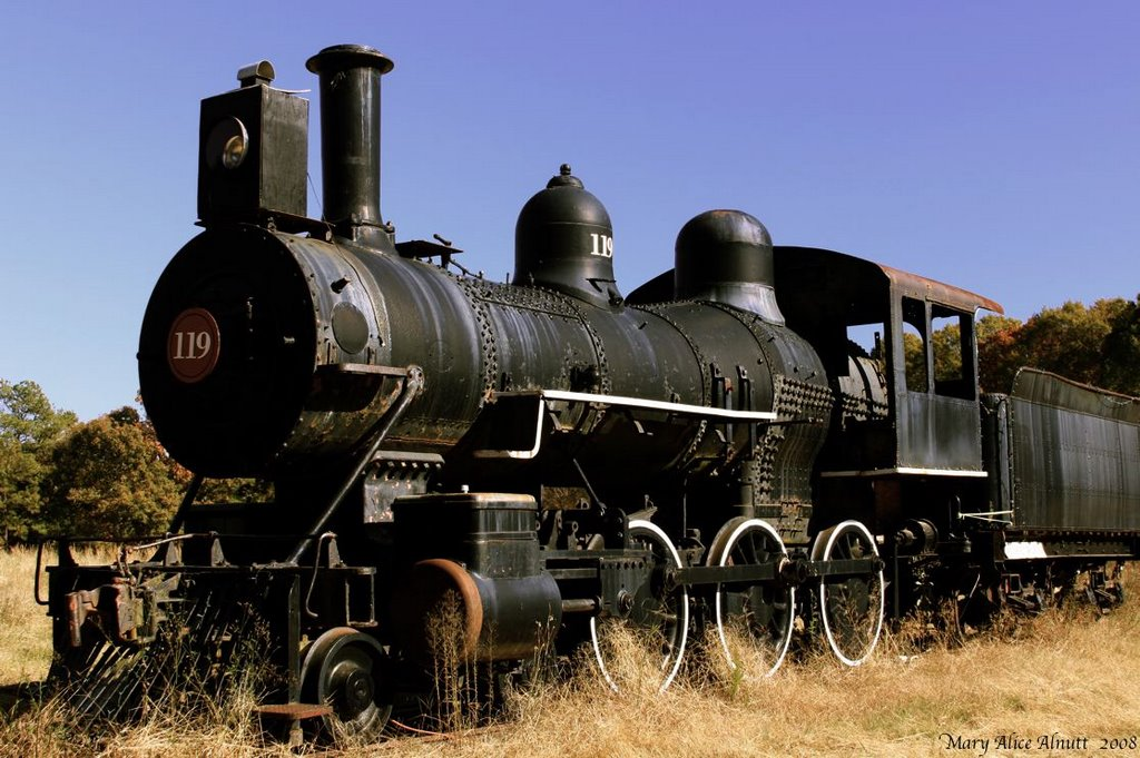 """ENGINE 119.  """"Elizabeth""""  Built for Houston & Texas Central Railroad in April 1892 by the Cooke Locomotive & Machine Company, Patterson, New Jersey.  When Doc Holliday left Georgia, he arrived in Dallas, Texas in September, 1873 aboard the Houston & Texas, Вест Поинт"""