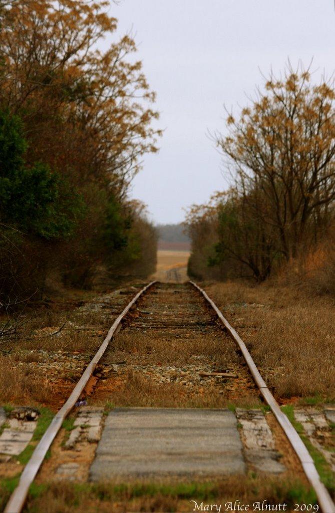 Winters track of solitude, Вест Поинт