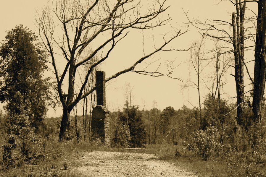 MEMORIES OF LOGTOWN.  The southeastern section of Upson County was one of the first to be settled, and was once one of the wealthiest, most cultural areas in Upson.  Logtown road from the town of Yatesville to Highway 19 near Flint river was the main arte, Вест Поинт