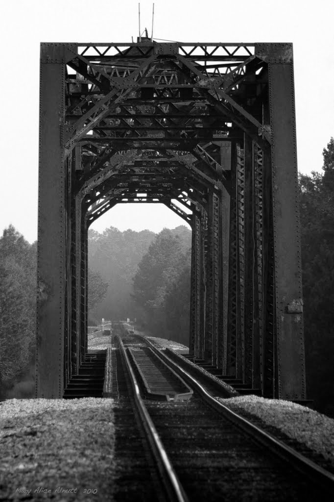 Ocmulgee River Bridge, Lumber City, Georgia. This through-truss SouthernRailway bridge once rotated on its center pier to allow Steamboats to pass.  Southern also maintained wharves on the riverbank to transfer freight to and from the boats.  No trace of , Вэйкросс