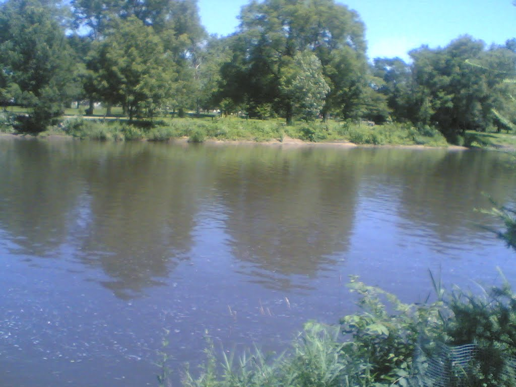 river zoomed out, Белвидер