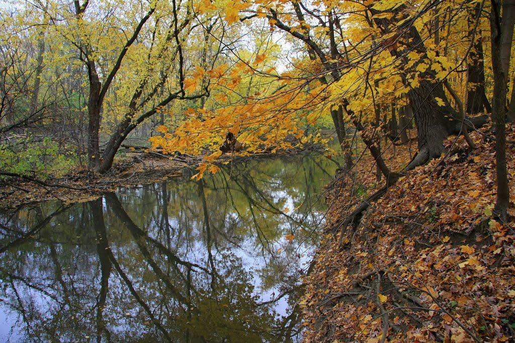 North Branch, Chicago River, Мортон Гров