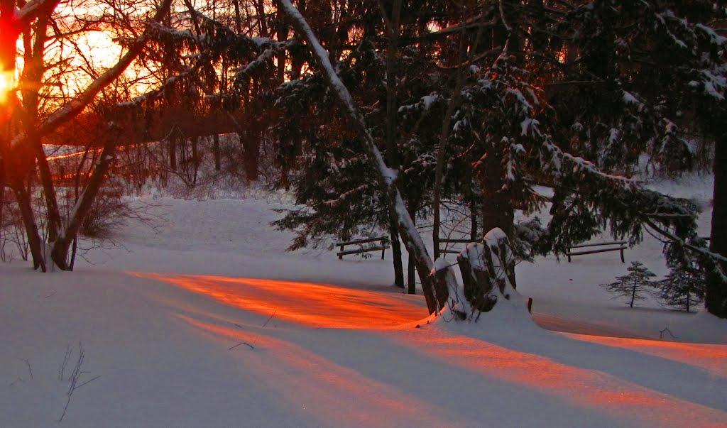 Warm Winter Sunrise, Брук