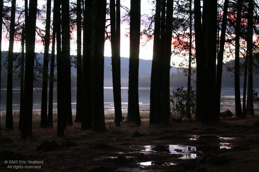 Sunrise at Bass Lake, Алтадена