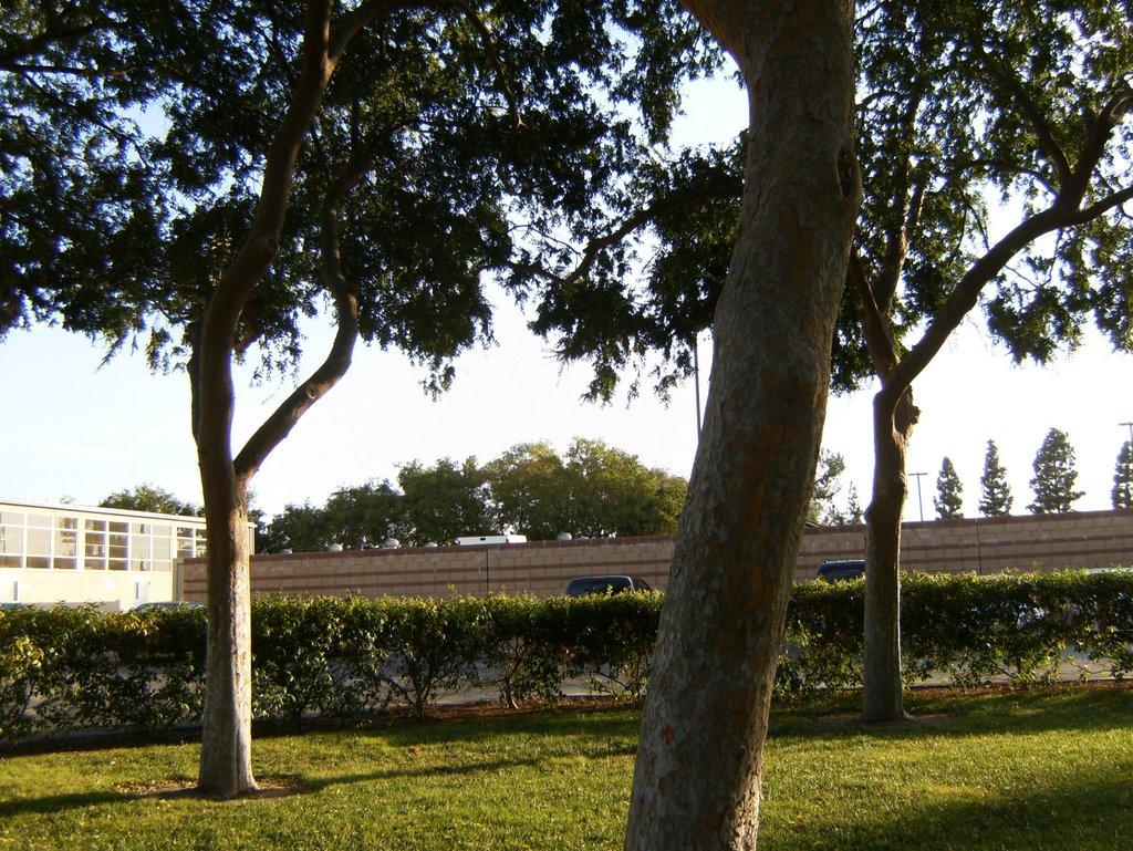 Mini Park, Ла-Мирада