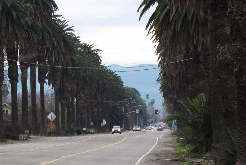 Las Palmas Avenue, Patterson, Паттерсон