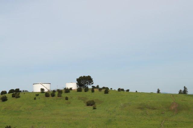 The tanks across the valley, Петалума