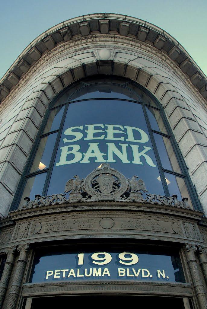 Seed Bank, Petaluma, California, Петалума