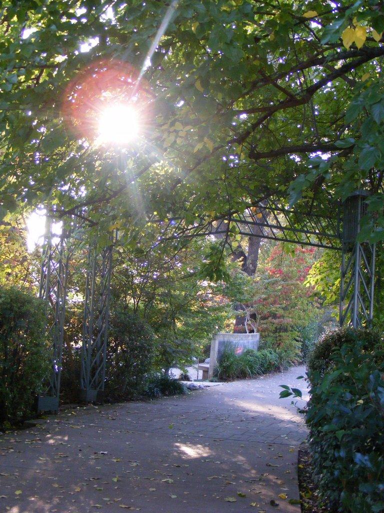 Northern Sacramento River Trail, Реддинг