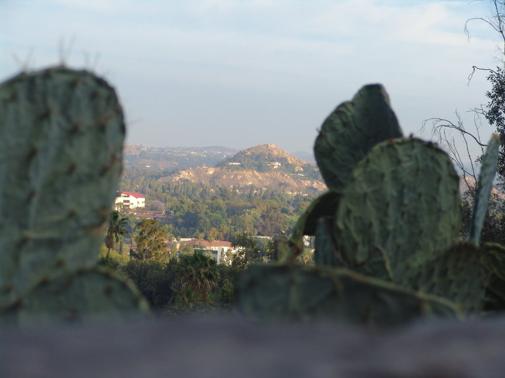 From Mt. Rubidoux Looking Tword Pachappa Hill, Риверсайд