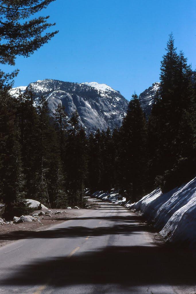 View on the road to lake Tahoe, Саут-Лейк-Тахо