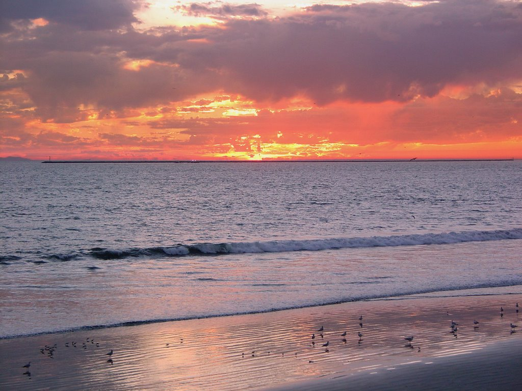 Sunset at Seal Beach, California, Сил-Бич