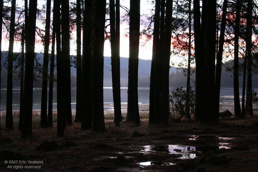 Sunrise at Bass Lake, Тарлок